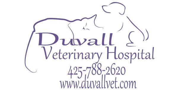 Licensed Veterinary Technician